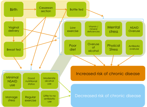 Increasingly, chronic disease is being seen as stemming from altered gut function. Follow the arrows to see what the risks for chronic disease are. All of the factors that increase chronic disease risk adversely affect gut function too.