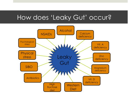 All of these factors can lead to breakdown of the tight junctions and leaky gut. NSAIDs are pain relievers like Aspirin, Aleve, Advil, etc. SIBO is an acronym for small intestinal bacterial overgrowth.