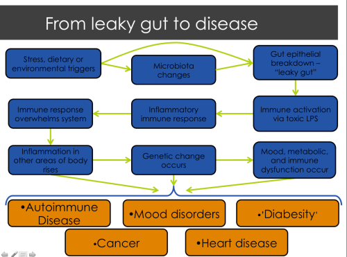 Start in the upper left corner of the diagram and follow the arrows to see how a leaky gut leads to disease.